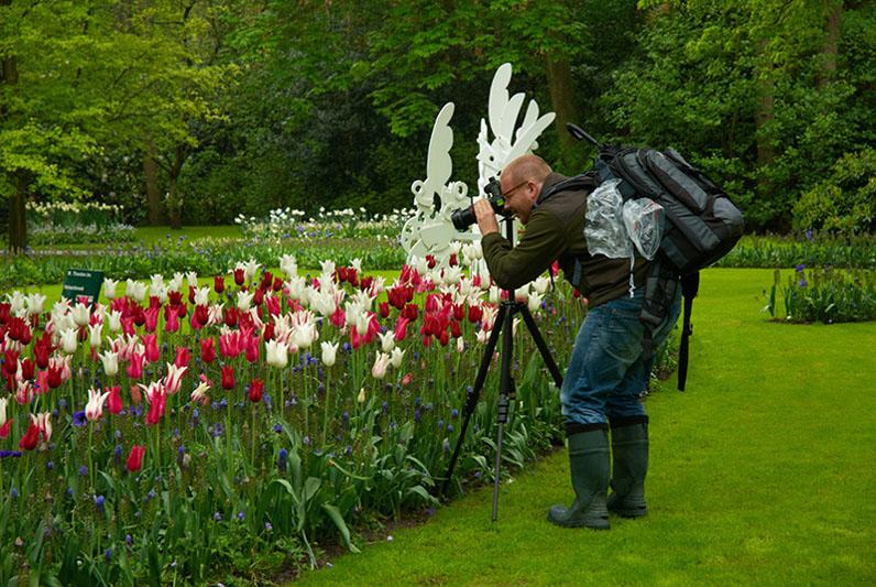 jak zostać zawodowym fotografem